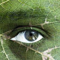tecnica ed anche certificazione biologica e vegana, a chi desidera entrare nel mondo della cosmesi naturale.